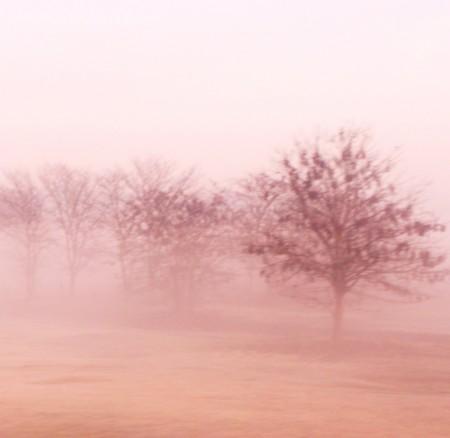 Neblina…